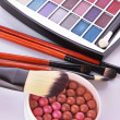 Cosmetic brushes  brush , eye shadows and rouge  on the white ba — Stock Photo