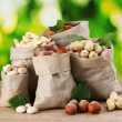 Variety of nuts in bags on green background — Stock Photo #6669290