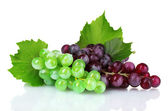 Ripe green and red grapes — Stock Photo
