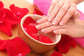 Hands with french manicure relaxing in bowl of water with rose petals — Stock Photo