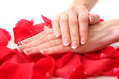 Beaitiful womans hands with manicure on the rose petals — Foto de Stock