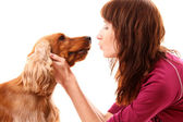 Young brown cocker spaniel and young woman on white background — Foto de Stock