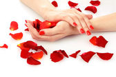 Beautiful red manicure and flower on white background — Stock Photo