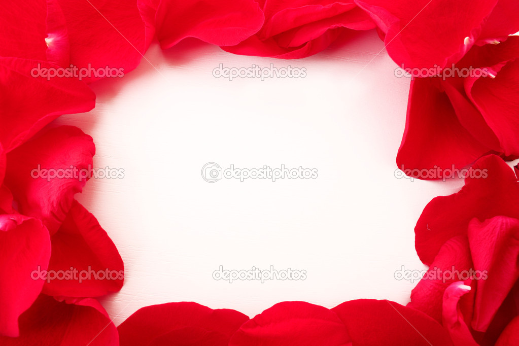 Rose petals as a frame  on white — Stock Photo #6660459