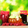 Tasty berry and fruit jam and berry on green background — Stock Photo #6676184