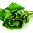 Bunch of spinach isolated on white background — Stock Photo