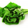 Bunch of spinach isolated on white background — Stock Photo #6677049