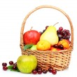 Fruits — Stock Photo #6677228