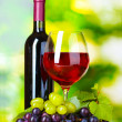 Ripe grapes, wine glass and bottle of wine — Stock Photo