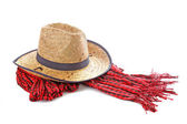 Cowgirl hat and scarf isolated on white — Stock fotografie