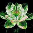 Stock Photo: Glass lotus flower on black