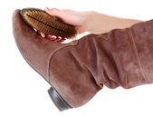 Shoe Polishing — Stock Photo