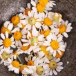 Royalty-Free Stock Photo: Chamomile flowers in mortar