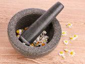 Flores de manzanilla en un mortero — Foto de Stock