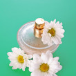 Bottle of perfume  and  camomile on blue background — Stock Photo