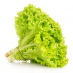 Lettuce isolated on white — Stock Photo #6711036