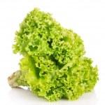 Lettuce isolated on white — Stock Photo #6711040