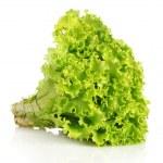 Lettuce isolated on white — Stock Photo #6711045
