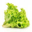 Lettuce isolated on white — Stock Photo #6711061
