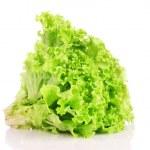 Lettuce isolated on white — Stock Photo #6711063