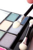Big eye shadow kit and applicators — Stock Photo