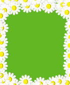 Green background with daisies — Stock Vector