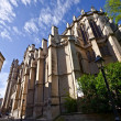 Backside of Saint Pierre Cathedral, Montpellier — Stock Photo #6689233