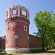 Tower of ancient fortification, Moscow — Stock Photo