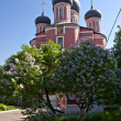 Donskoy monastery, Moscow — Stock Photo