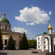 Stock Photo: Cathedral of Danilov monastery, Moscow