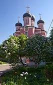 ドンスコイ修道院、モスクワ — ストック写真