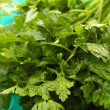Twig of parsley background — Stock Photo