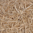Texture of wood shavings — Stock Photo #6714139