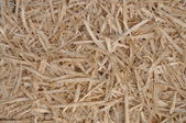 Texture of wood shavings — Stock Photo