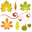 Royalty-Free Stock Vektorov obrzek: Autumn leaves