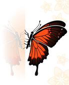 Butterfly — Vetorial Stock