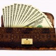 Royalty-Free Stock Photo: Purse