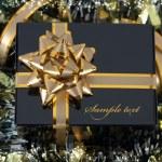 Gift — Stock Photo #6683568