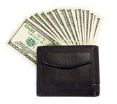 Peněženka — Stock fotografie