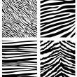 Zebra pattern — Stock Vector #6673016