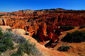 View of the Amphitheater, Bryce Canyon, Utah — Stock Photo