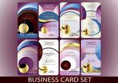 ビジネス カードのセット — ストックベクタ