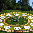Flower clock — Stock Photo #6729609
