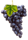 Bunch grape with leaf — Stock Photo