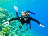 Scuba diver — Stock Photo