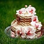 торт с орхидеями — Stock Photo #6669587