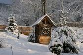 Poços no jardim de inverno — Foto Stock
