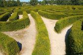 Maze Puzzle — Stock Photo