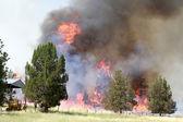 Lightning Strike Fire on Farmland 2 — Stock Photo
