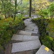 Stone Steps in Japanese Garden — Stock Photo